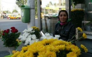 Strada Zambila, marchande de fleurs à Bucarest