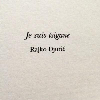 Je suis tsigane, Rajko Djuric