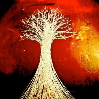L'arbre blanc entre les mains de Nathan, Lyon, février 2019. © Atelier de l'Arbre bleu.